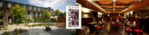 papuga_blog