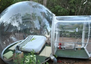 bubble tent - forest