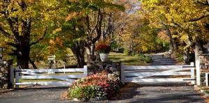 Winvian_Farm_driveway