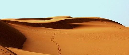 desert_world_biggest_hotel